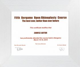 Bergamo_open_rhinoplasty_course_2016