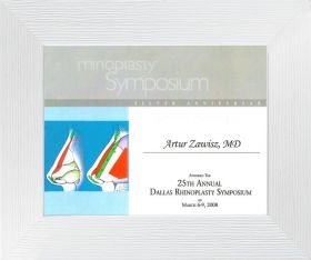 rhinoplasty_symposium_Dallas_2008